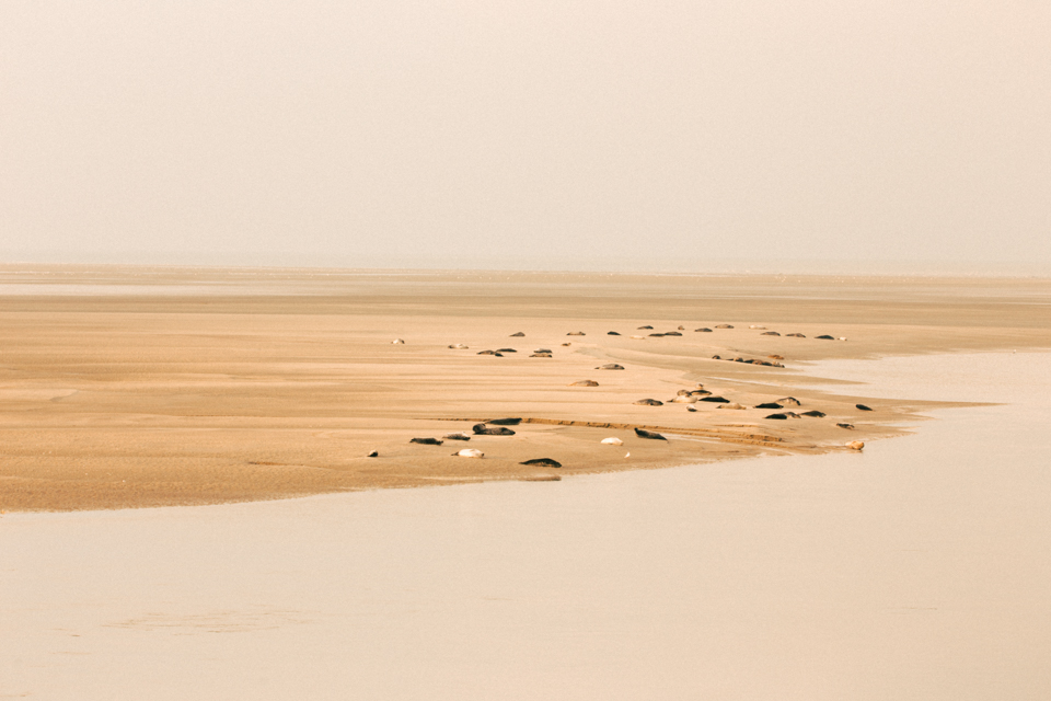 baiedesomme23
